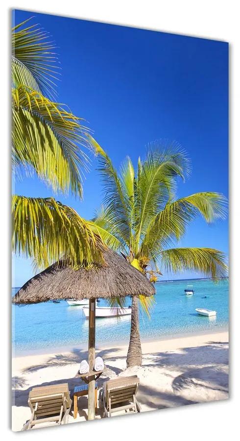 Foto obraz akrylové sklo Tropická pláž pl-oa-70x140-f-89713117