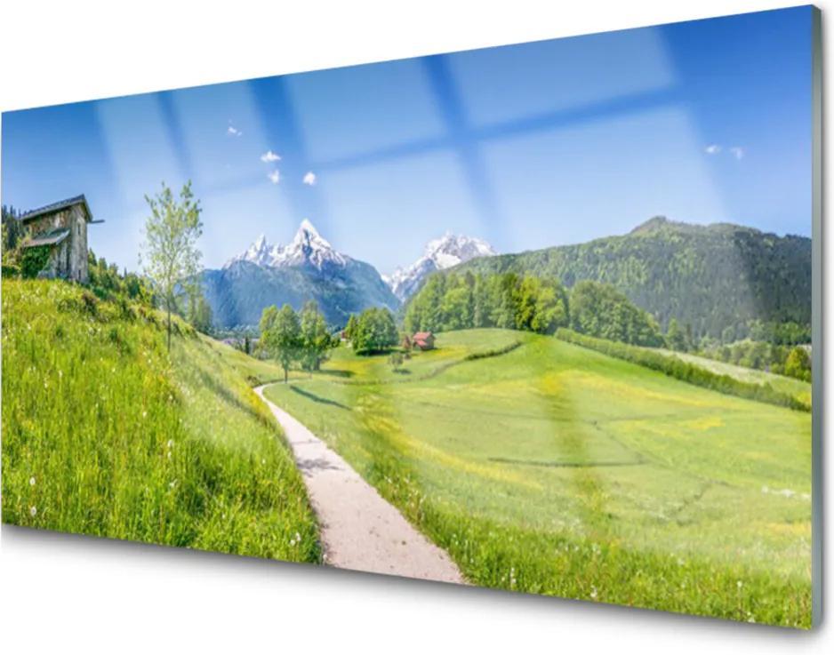 Skleněný obraz Hory louka stezka údolí