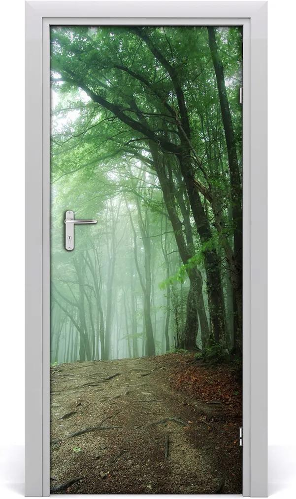 Fototapeta na dveře samolepící Mlha v lese
