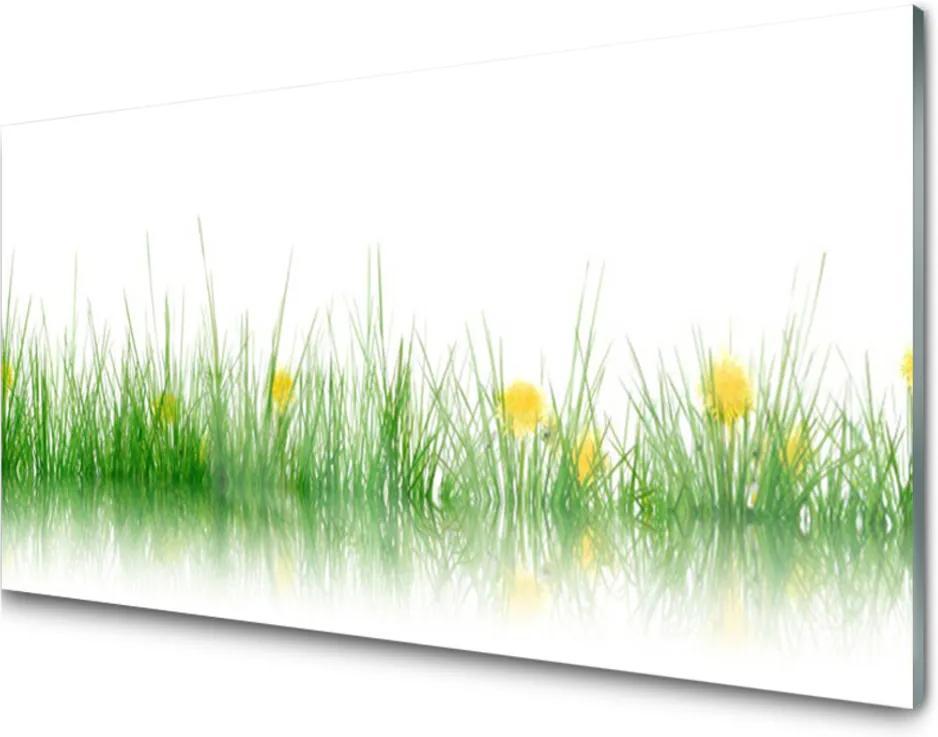 Sklenený obklad Do kuchyne Príroda Tráva Kvety