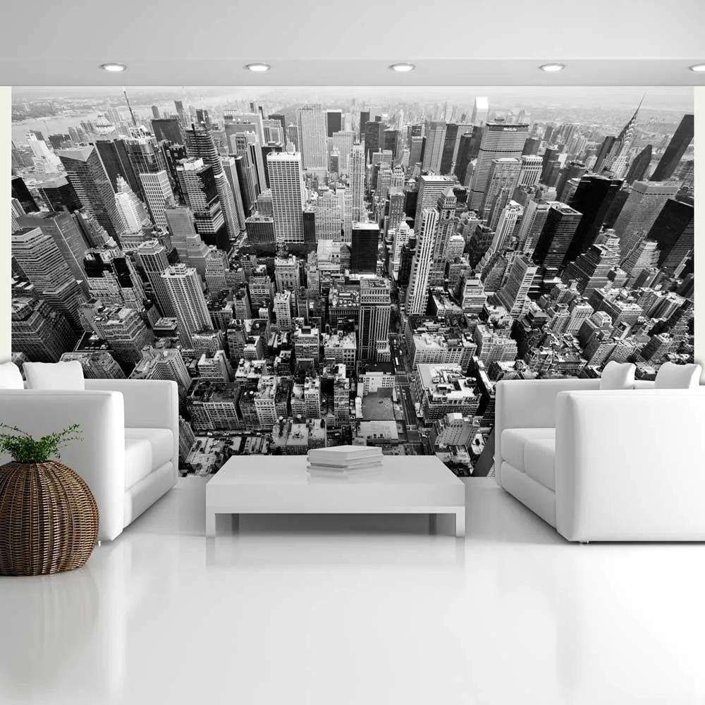 Fototapeta - USA, New York: black and white 450x270