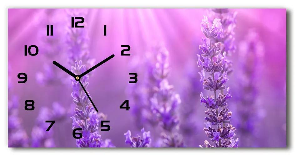 Moderné sklenené hodiny na stenu Levanduľa pl_zsp_60x30_f_84232090