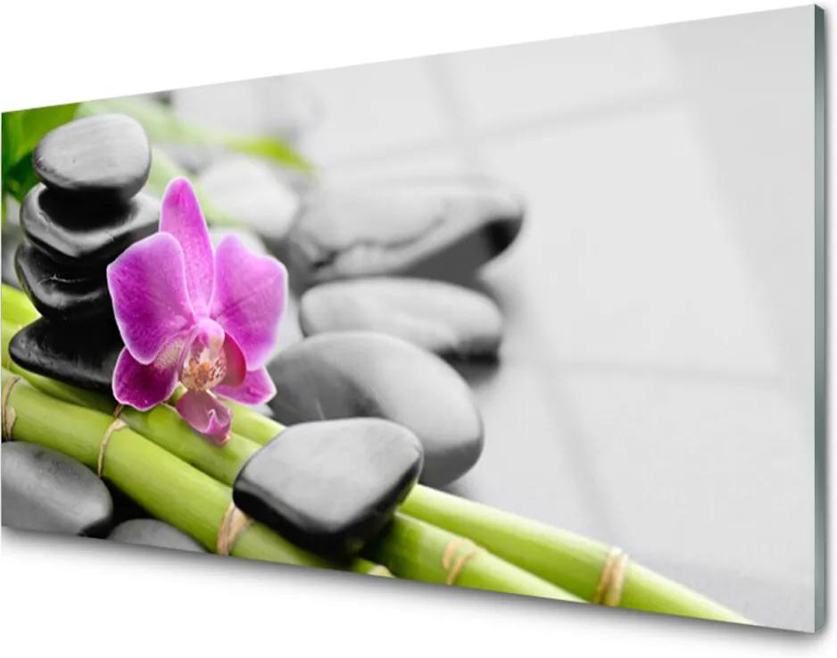 Obraz plexi Bambus Kvet Kamene Umenie
