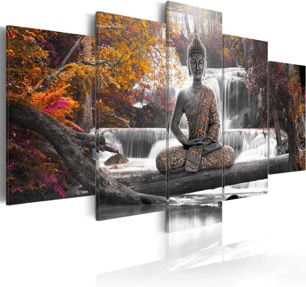 Obraz - Autumn Buddha 100x50