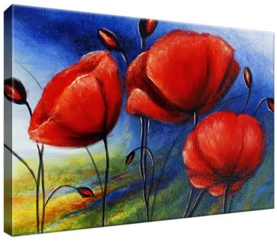 Obraz na plátne Veselé maky 30x20cm 2365A_1T
