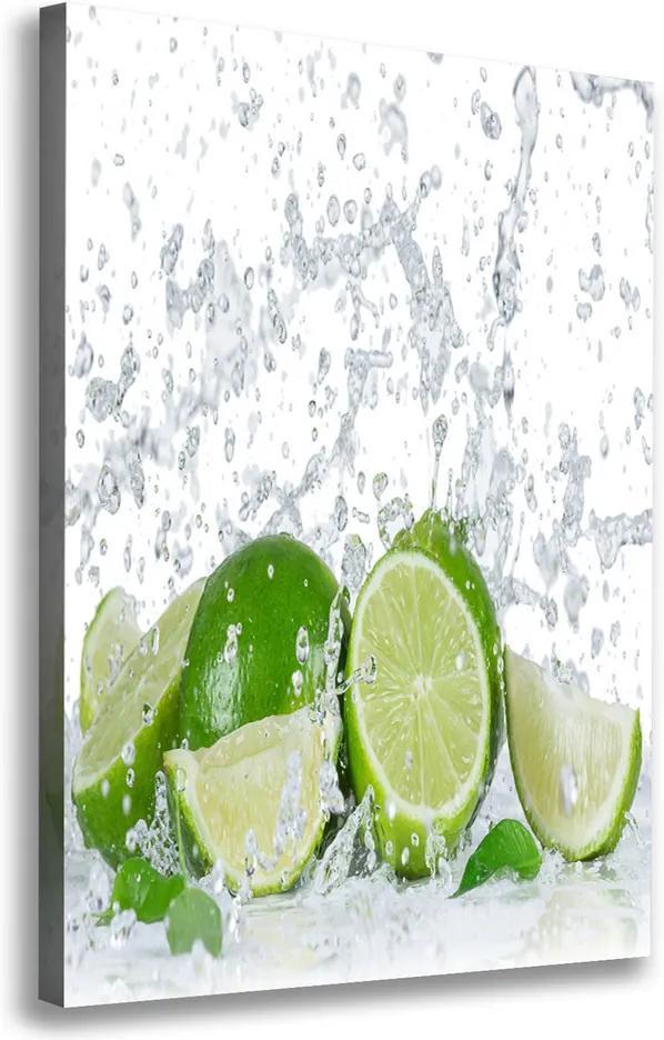 Moderný obraz canvas na ráme Ovocie pl-oc-70x100-f-82343730