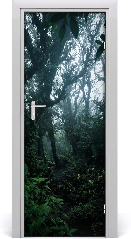 Fototapeta na dveře samolepící Deštný les