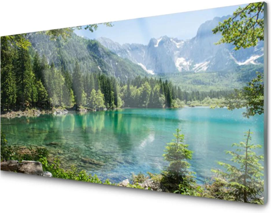 Skleněný obraz Hory jezero les příroda