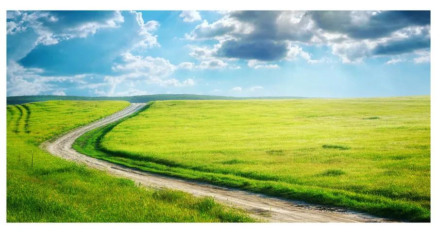Foto obraz akrylový Chodník na lúke pl-oa-140x70-f-42994510