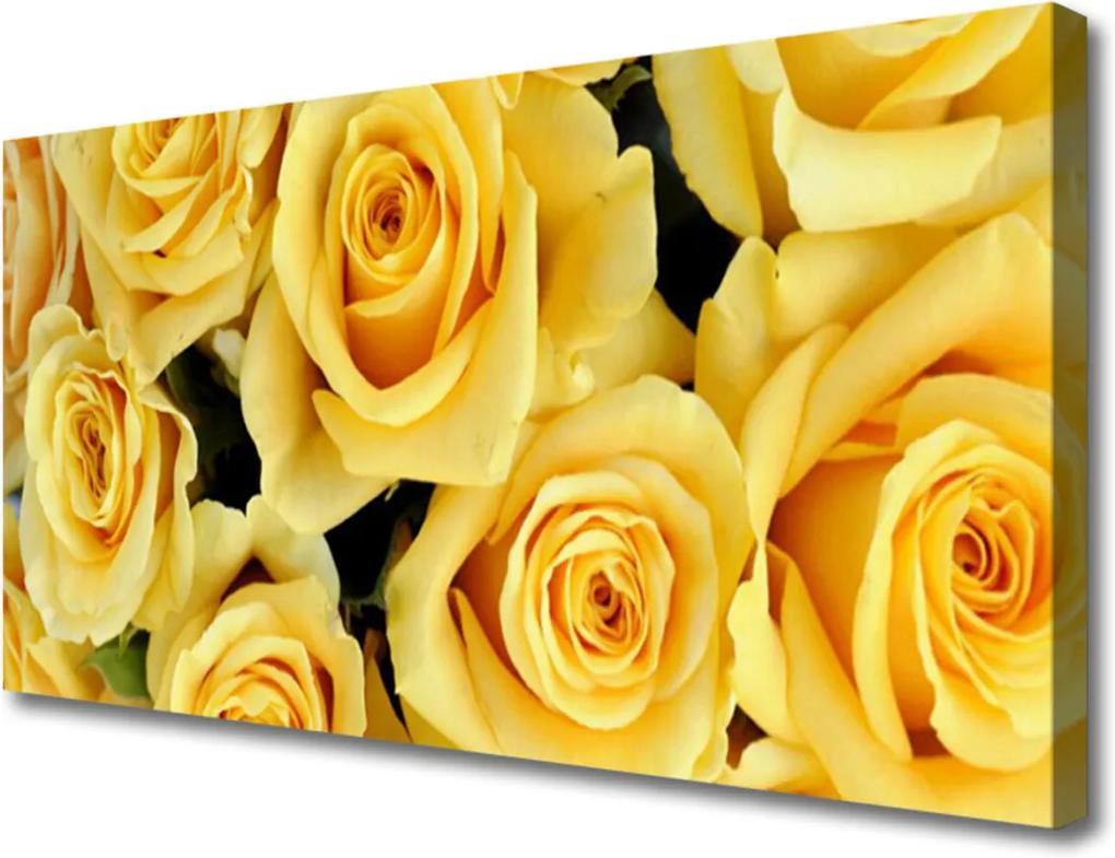 Obraz Canvas Růže květiny rostlina