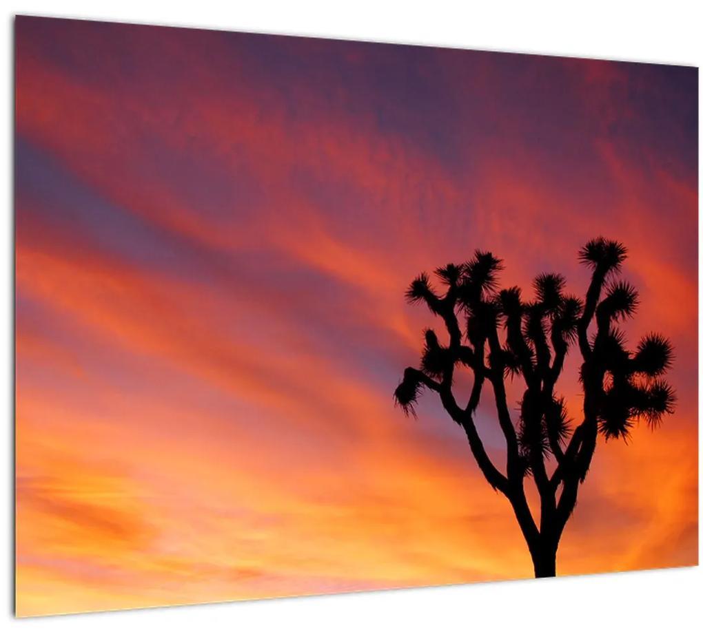 Obraz západu slnka nad siluetou stromu (70x50 cm), 40 ďalších rozmerov