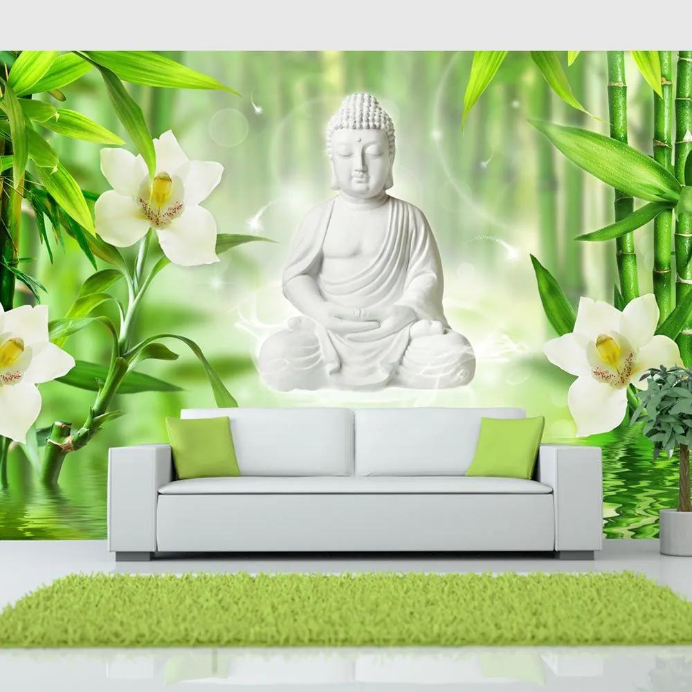 Fototapeta - Buddha and nature 350x245