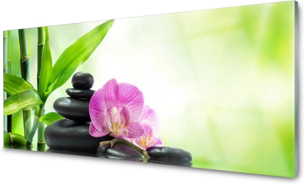 Skleněný obraz Bambus kameny zen umění