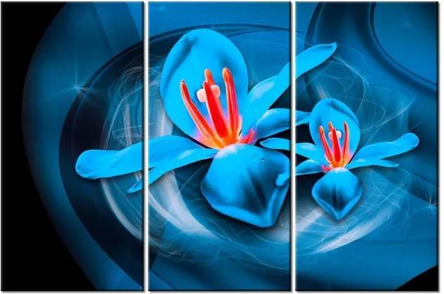 Tlačený obraz Vesmírne kvety – Jakub Banas 90x60cm 3575A_3J