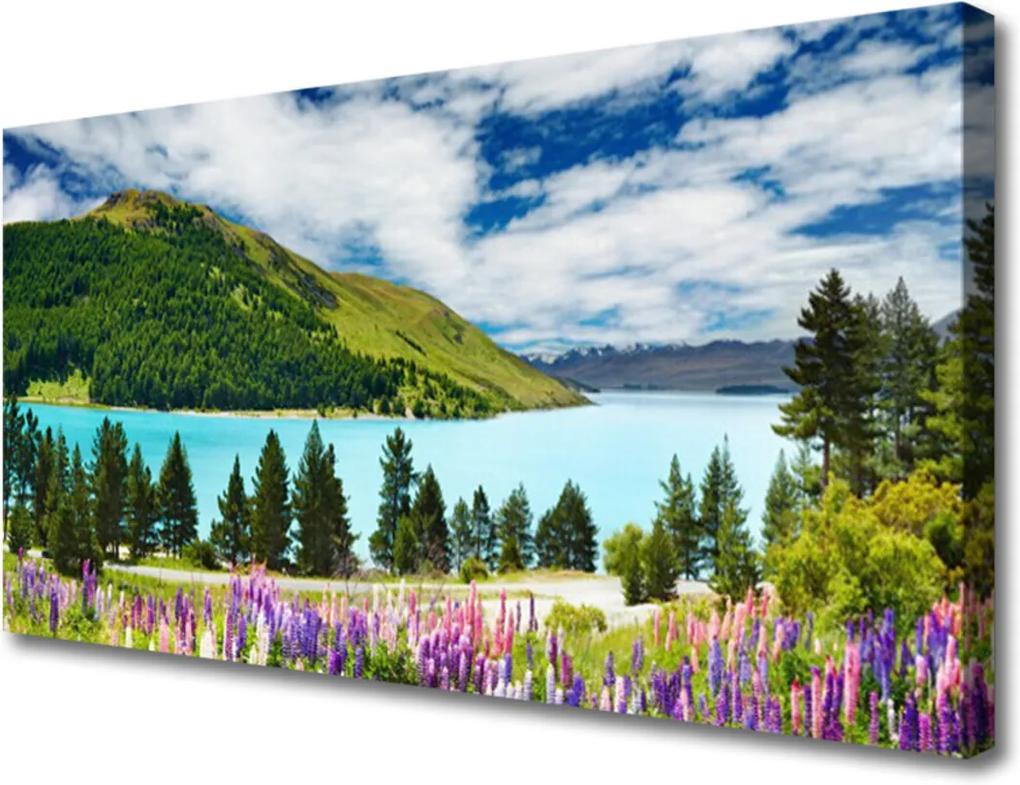 Obraz Canvas Hora les jezero krajina
