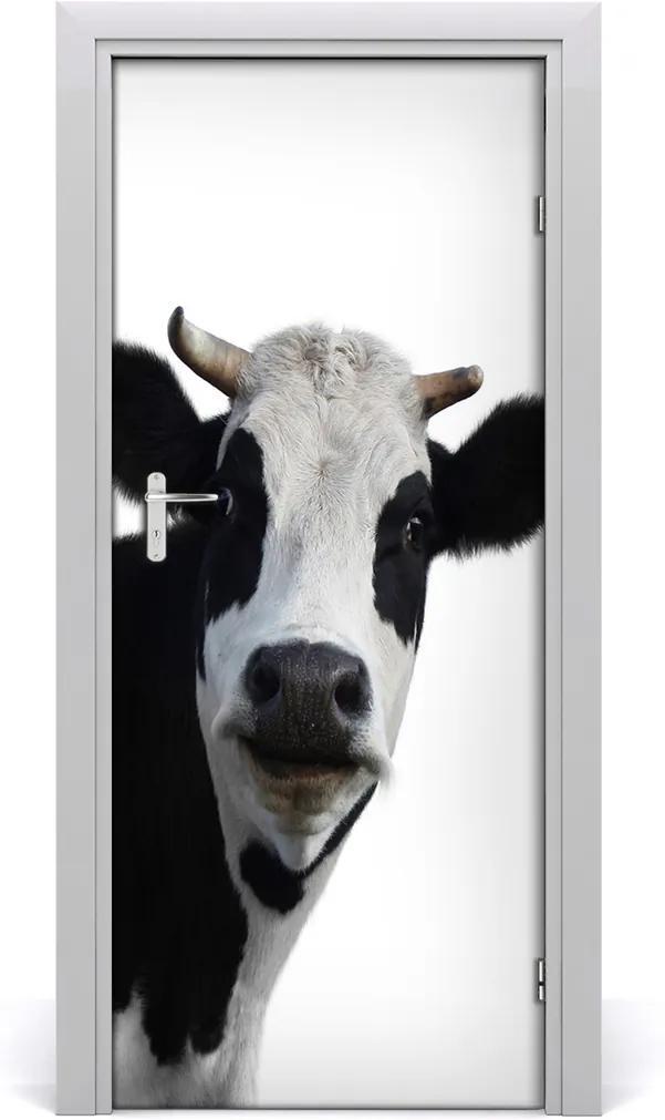 Samolepící fototapeta na dveře Flekatá kráva