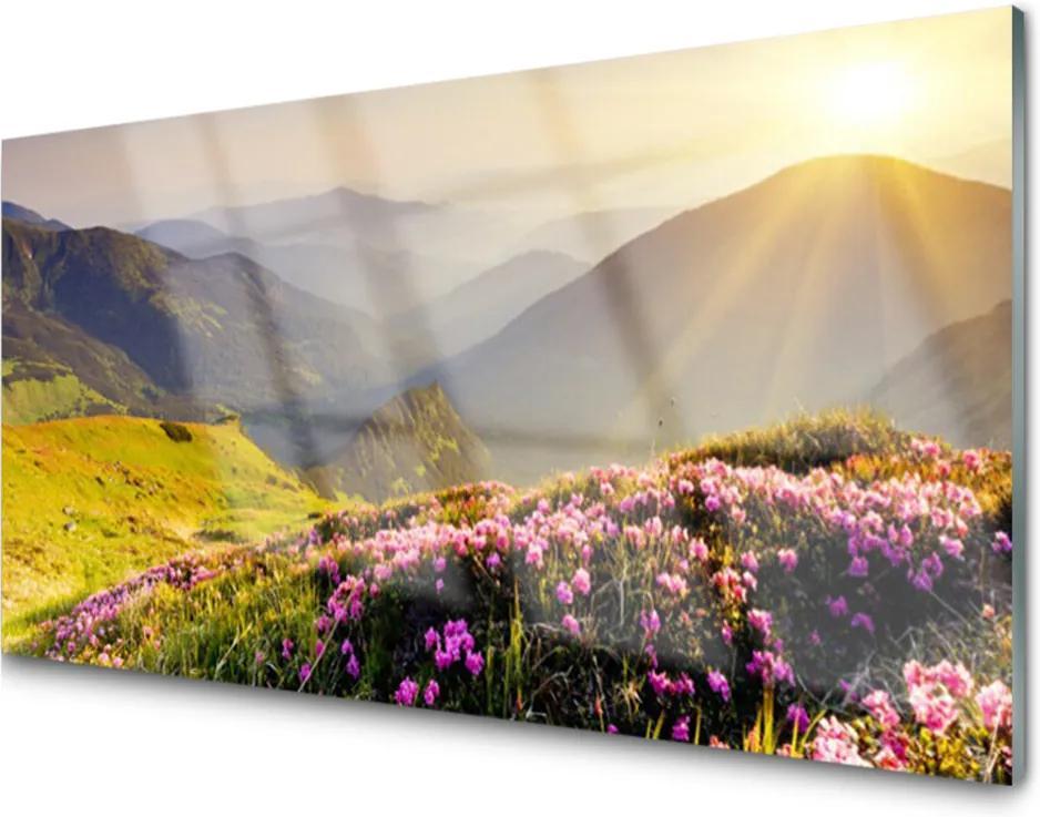 Obraz plexi Hora Lúka Krajina