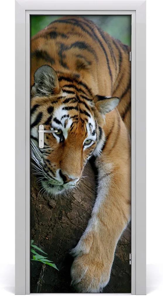 Samolepící fototapeta na dveře Tygr na stromě