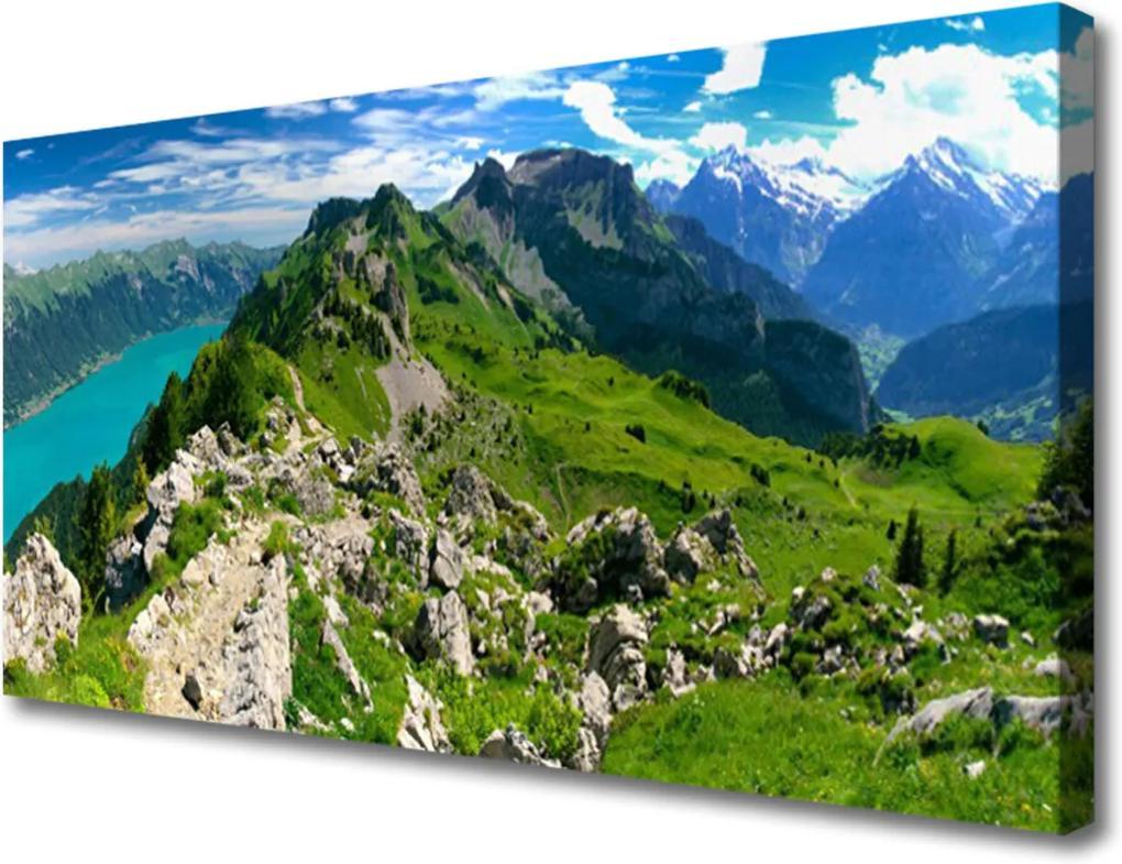 Obraz Canvas Louka hory krajina příroda
