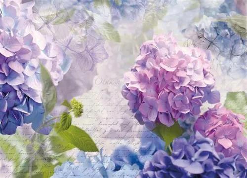 Fototapety, rozmer 368 x 254 cm, kvety, Komar 8-705