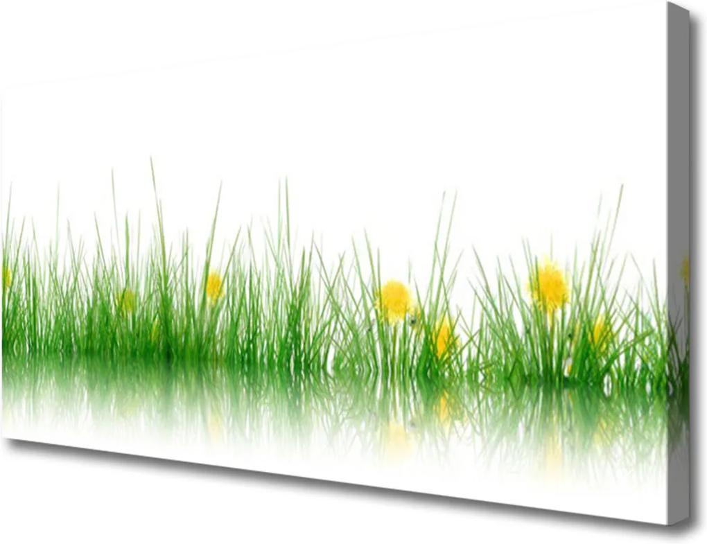 Obraz Canvas Příroda tráva květiny