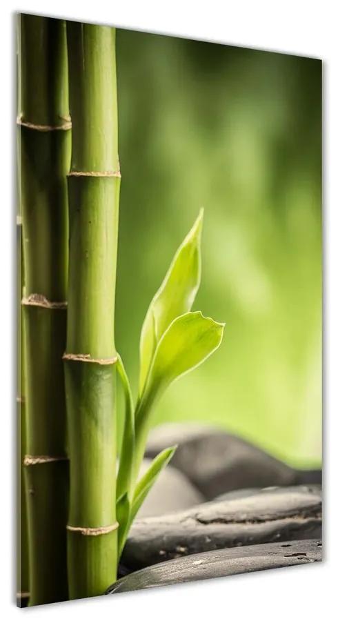 Foto obraz akrylové sklo Bambus pl-oa-70x140-f-89101727