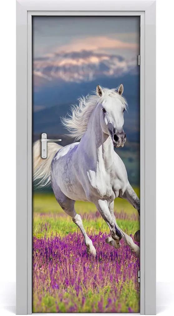 Samolepící fototapeta na dveře Bílý kůň