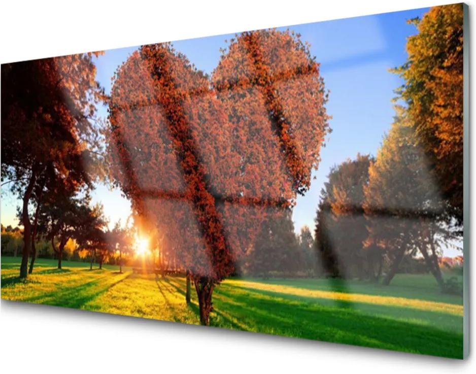 Skleněný obraz Strom Srdce Přírdoa