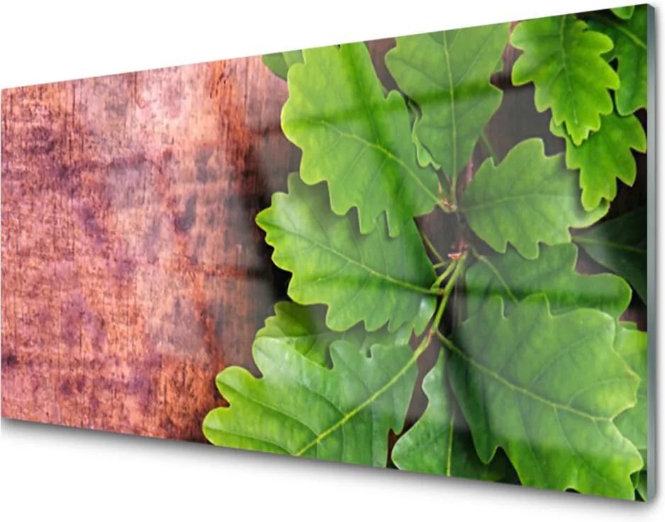Obraz na skle Skleněný listy dub