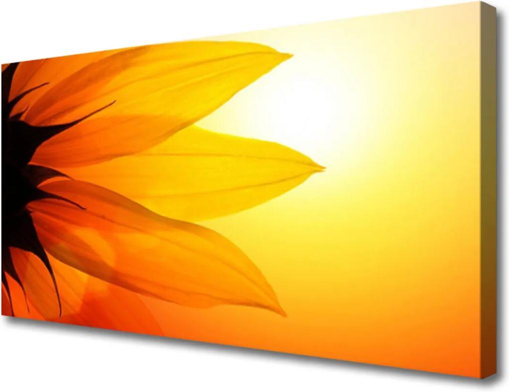 Obraz na plátně Květ rostlina příroda