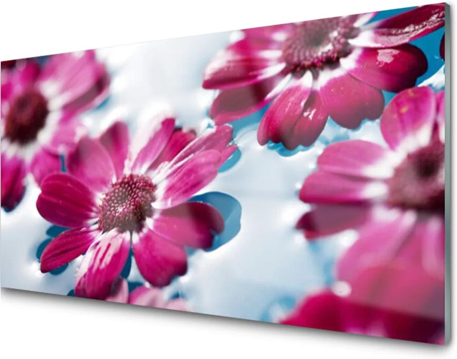 Sklenený obklad Do kuchyne Kvety na Vode Príroda