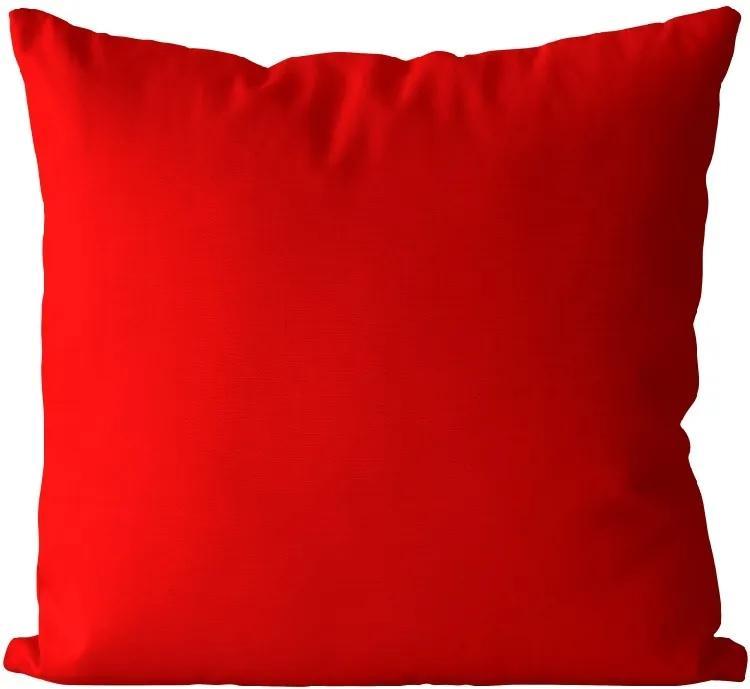 Vankúš Červený (Veľkosť: 40 x 40 cm)