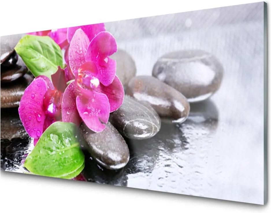 Sklenený obklad Do kuchyne Kvet Kamene Rastlina