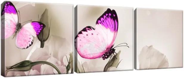 Obraz na plátne Motýlí raj 90x30cm 1242A_3A