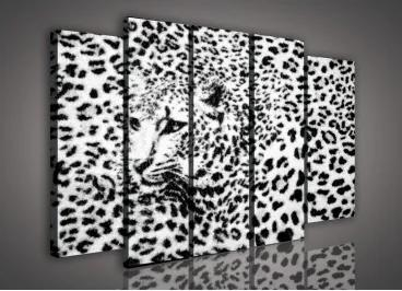 Obraz na plátne viacdielny - OB2714 - Leopard biely 150cm x 100cm - S12