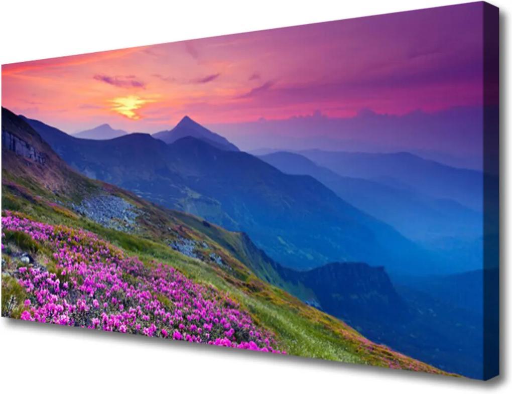 Obraz na plátně Hory Lúka Kvety Príroda