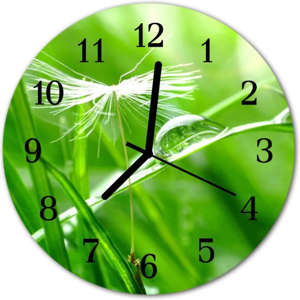 Skleněné hodiny kulaté tráva