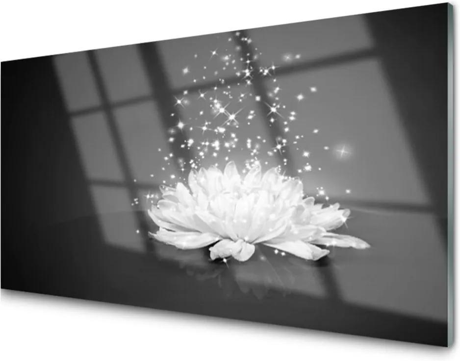 Akrylové obraz Květ rostlina příroda