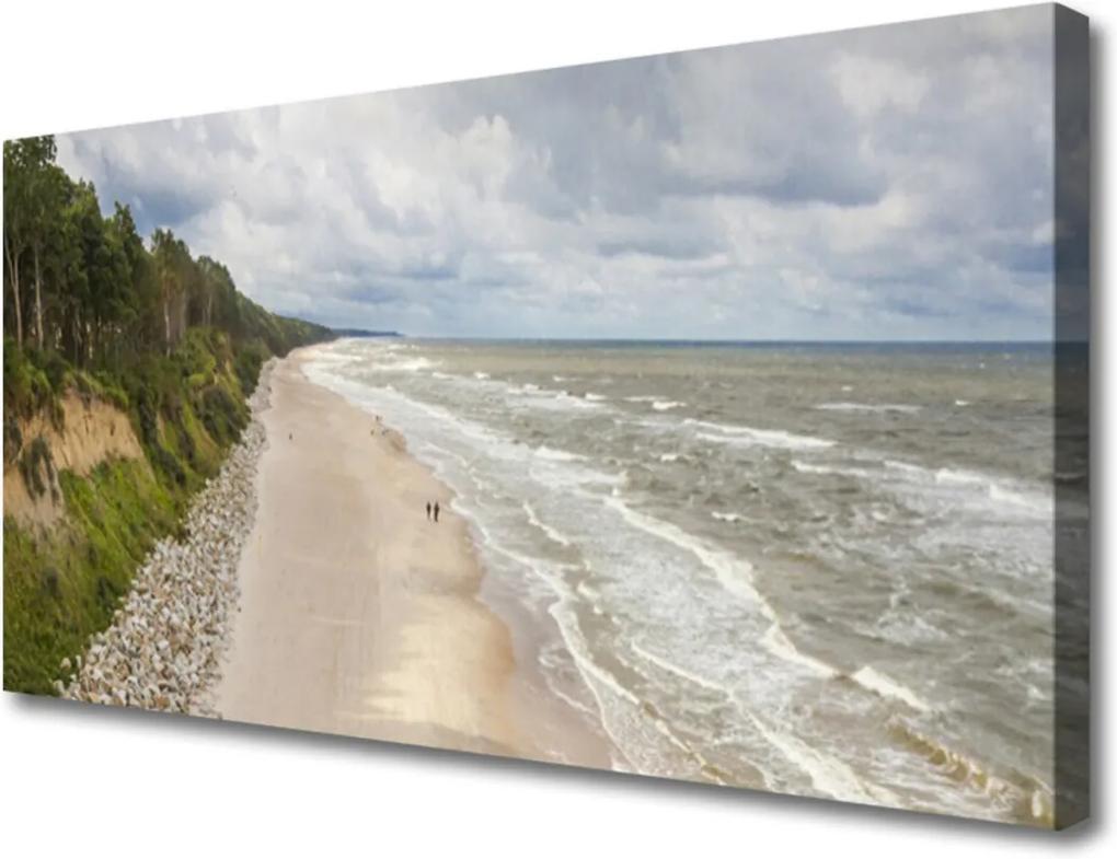 Obraz na plátně Pláž moře strom příroda