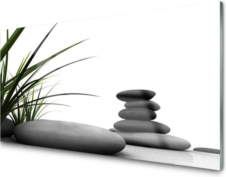 Obraz plexi Kamene Zen Tráva