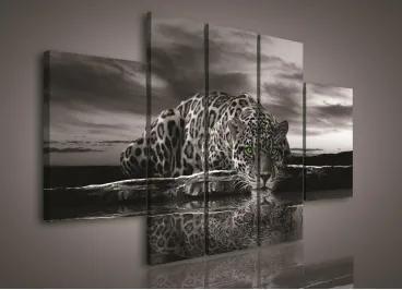 Obraz na plátne viacdielny - OB2293 - Jaguár 170cm x 100cm - S1