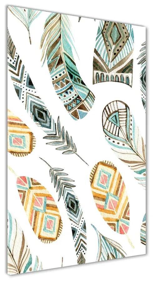 Foto obraz akryl do obývačky Etnická pierka pl-oa-70x140-f-121198481
