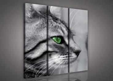 Obraz na plátne viacdielny - OB3061 - Mačka 90cm x 80cm - S6