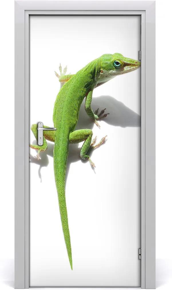 Samolepící fototapeta na dveře Zelená ještěrka