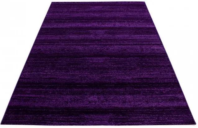 Ayyildiz koberce Kusový koberec Plus 8000 lila - 80x150 cm