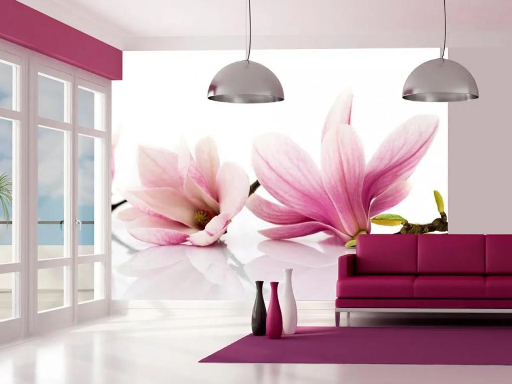 Murando DeLuxe Fototapeta - Květ magnólie 150x116 cm