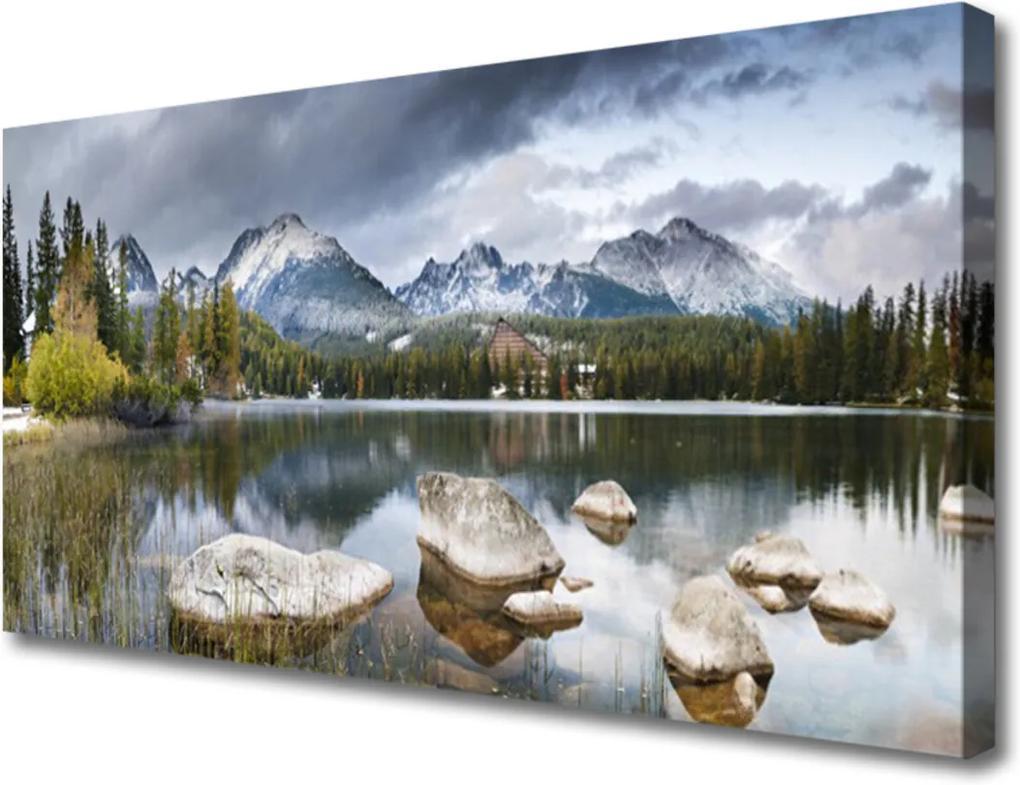 Obraz Canvas Jezero hory les krajina