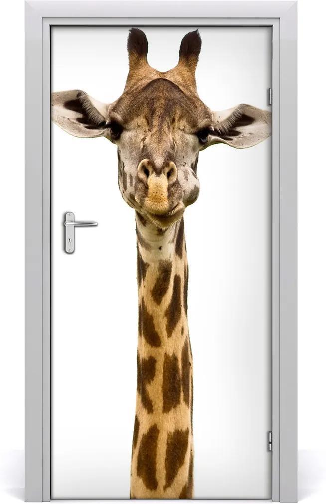 Samolepící fototapeta na dveře Žirafa