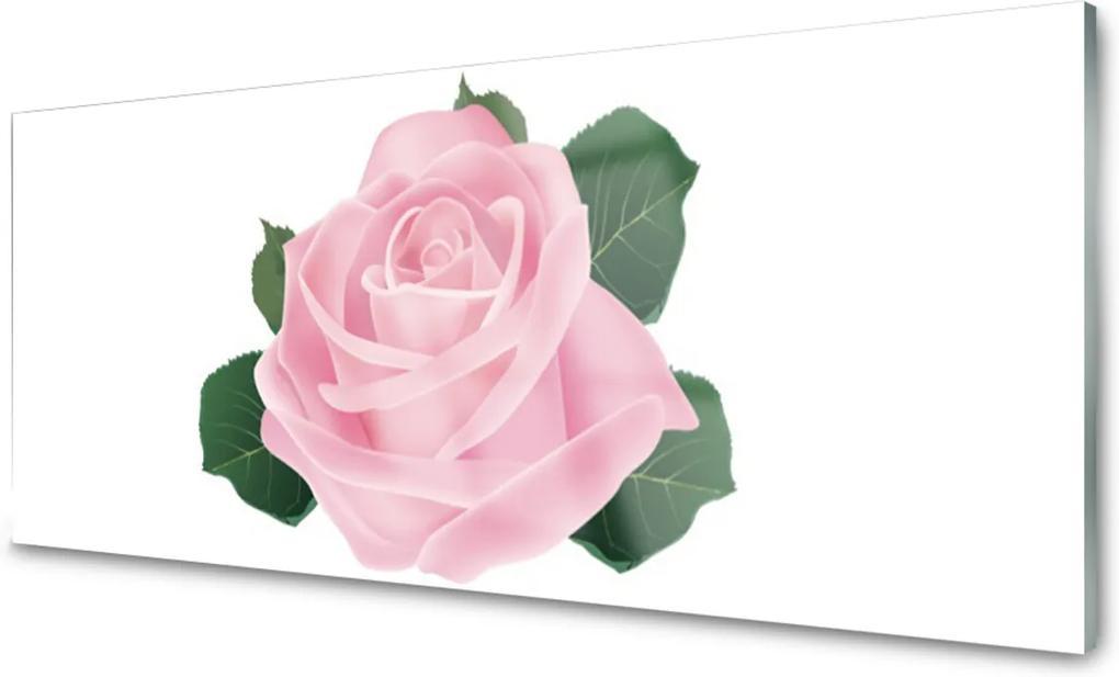 Obraz na skle Růže květ rostlina