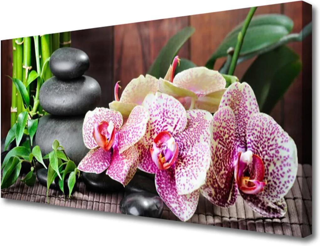 Obraz Canvas Bambus kameny zen květiny
